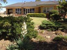 Lifestyle Property with 40 acres Robertstown Goyder Area Preview