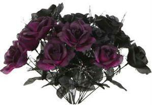 Rose Bush Ebay
