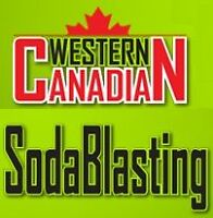 Salesman for Dry Ice and Soda Blasting - Western Canada Rep.