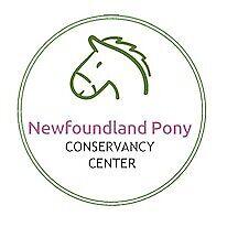 Newfoundland Pony Conservancy Center
