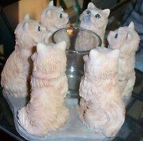 Circle of Yellow Persian cats, Cat circle candleholder, Persians Oakville / Halton Region Toronto (GTA) image 2