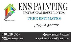 Professional House Painter / Painting Service
