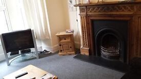 nice double room available non-student house, £90/week, 10 mins from Mutley Plane (no agents fees)