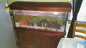 4' Fish tank. Campbelltown Campbelltown Area Preview