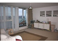 two double Bedroom with great overlooking river view flat in Excel london/silver town, e16