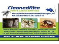 At CleanedRite Pest Control London, We Guarantee You Peace of Mind.