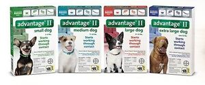 Fleas infesting your pets and Dwelling - Advantage II Eq- 24.90 Peterborough Peterborough Area image 4