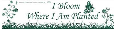 """I Bloom Where I Am Planted"" Inspirational Motivational 11x3 Bumper Sticker"
