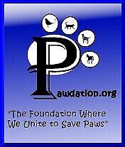 Pawdation