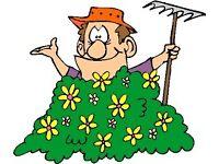 Gardener/Handyman Required