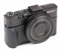 Lost : Sony RX-100 Camera somewhere in Lake Louise/Moraine