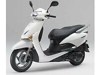 Honda Lead 110cc White