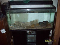 30 Gallon Fish Tank with Stand Filter and Canopy Light