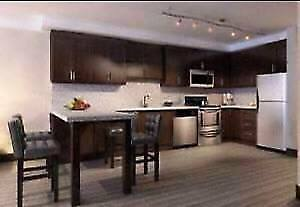 LUXE 4-Month Sublet May-Aug: 1 bedroom with ensuite bathroom Kitchener / Waterloo Kitchener Area image 3