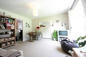 1 bedroom flat in Wimbledon - spacious, sunny, short walk to town centre and station