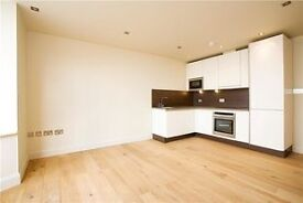Superb 2 bed apartment in portered block, Queensway!