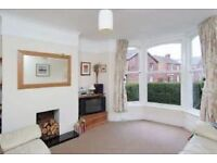 Nether Edge - Friendly Victorian Terraced Home