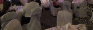 197 White Chair Covers