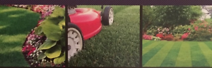 Lawn Mowing Kellyville The Hills District Preview