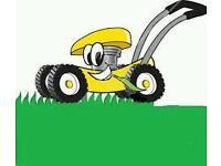 Jd gardening services