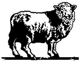 Black Sheep Pickers