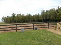 HORSE BOARDING - 15 MINUTES FROM AMHERST & PORT ELGIN