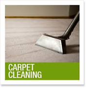 Bond cleans Carpet cleaning &Pest control ph 0 Springfield Ipswich City Preview