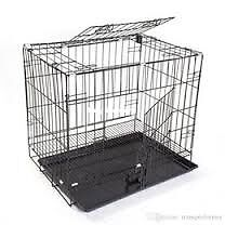 In need of Dog Crates/Cages