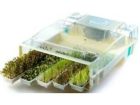 EasyGreen Automatic Sprouter 'MikroFarm' Deluxe