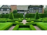 Garden and landscaping services - LOWEST PRICE ON GUMTREE In and around London