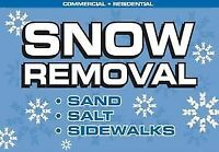 SNOW REMOVAL, SHOVELING, PLOWING, CLEARING, BLOWING