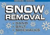 SNOW REMOVAL, SHOVELING, PLOWING, BLOWING.