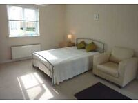 Large Double Room with EnSuite - 10 week let from mid-January