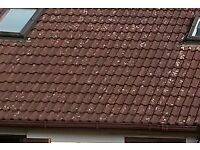 Used Double Roman Roof Tiles
