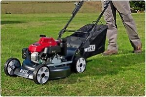 Grass Cutting and Trimming Service