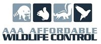 Affordable Wildlife Control - Affordable Raccoon Removal
