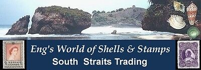 South Straits Trading