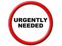 DSS accepted 2 bed property URGENTLY NEEDED