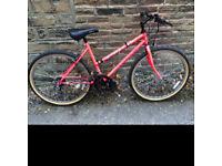 Ladies / Womens Apollo Nitro Mountain Bike - VGC - 10 Speed shimano gears