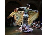Private Flamenco Lessons