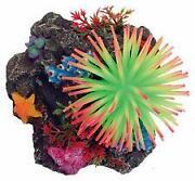 Coral Reef Decor