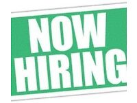 Advertising Assistant Needed APPLY NOW!