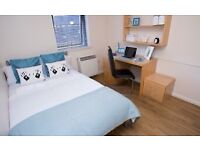 Spacious student Accommodation for SEPT' 2018