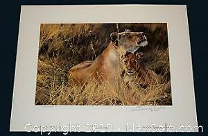 John Seerey Lester Togetherness lions, limited edition print, s/n