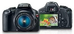 Canon Rebel T2I Camera + Canon 18-55 Kit Lens + Canon EF 50mm L