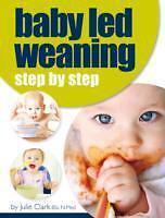 Baby Led Weaning von Julie Clark (2014, Taschenbuch)