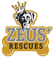 Zeus Place Rescues