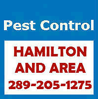 Pest Control Hamilton - Affordable and Reliable - 289-205-1275