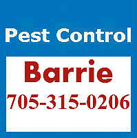 Pest Control Barrie - Affordable and Reliable - 705-315-0206