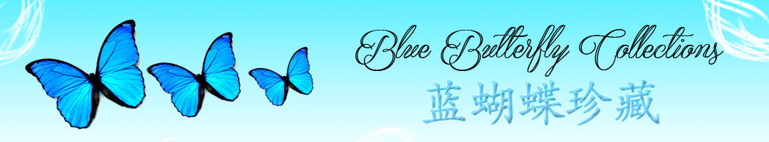 Blue Butterfly Collections